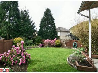 """Photo 10: 21072 86TH Avenue in Langley: Walnut Grove House for sale in """"MANOR PARK"""" : MLS®# F1009730"""