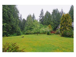 Photo 10: 11839 284TH Street in Maple Ridge: Whonnock House for sale : MLS®# V831322