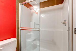 Photo 19: 322 7110 80 Avenue NE in Calgary: Saddle Ridge Apartment for sale : MLS®# C4285522