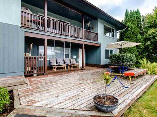 "Photo 22: 21763 48 Avenue in Langley: Murrayville House for sale in ""MURRAYVILLE"" : MLS®# R2485267"