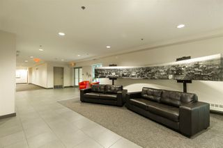 Photo 21: #100 9316 82 Ave NW in Edmonton: Zone 18 Condo for sale : MLS®# E4172955