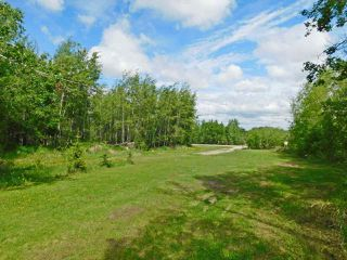 Photo 43: #1, 57018 Rg Rd 233: Rural Sturgeon County House for sale : MLS®# E4199987