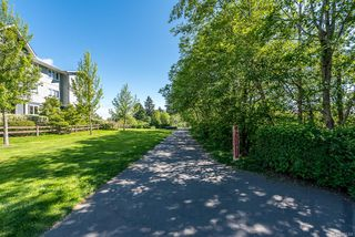 Photo 37: 312 1978 Cliffe Ave in : CV Courtenay City Condo for sale (Comox Valley)  : MLS®# 851304