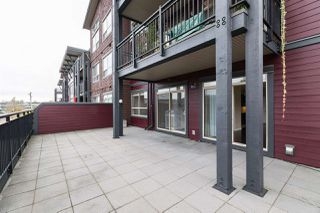Photo 19: 211 288 HAMPTON Street in New Westminster: Queensborough Condo for sale : MLS®# R2511157