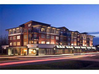 Photo 1: 211 288 HAMPTON Street in New Westminster: Queensborough Condo for sale : MLS®# R2511157