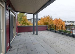 Photo 20: 211 288 HAMPTON Street in New Westminster: Queensborough Condo for sale : MLS®# R2511157