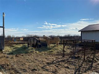 Photo 47: Bollinger Acreage in Battle River: Residential for sale (Battle River Rm No. 438)  : MLS®# SK831740