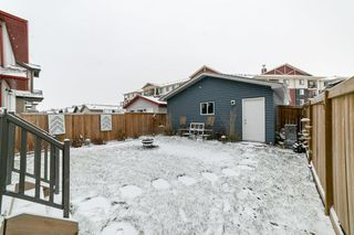 Photo 28: 7708 181 Avenue in Edmonton: Zone 28 House for sale : MLS®# E4180848