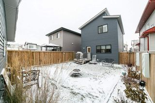 Photo 29: 7708 181 Avenue in Edmonton: Zone 28 House for sale : MLS®# E4180848