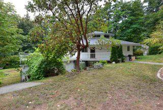 Photo 16: 2660 LOWER Road: Roberts Creek House for sale (Sunshine Coast)  : MLS®# R2422636