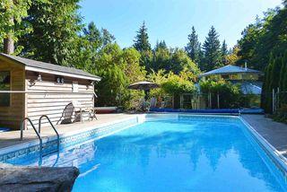 Photo 19: 2660 LOWER Road: Roberts Creek House for sale (Sunshine Coast)  : MLS®# R2422636