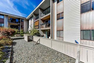 """Photo 18: 115 1442 BLACKWOOD Street: White Rock Condo for sale in """"Blackwood Manor"""" (South Surrey White Rock)  : MLS®# R2433629"""
