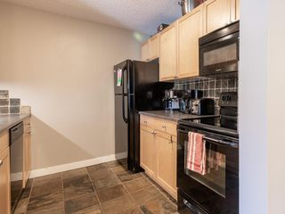 Photo 11: 311 930 18 Avenue SW in Calgary: Lower Mount Royal Apartment for sale : MLS®# C4299284