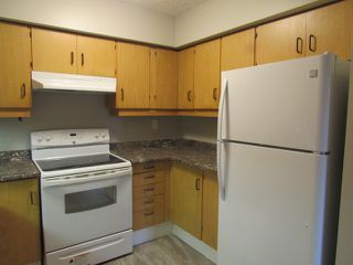 Photo 3: 310, 20 Alpine Place in St. Albert: Condo for rent