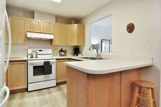 Photo 7: 309 6440 197 Street in Langley: Willoughby Heights Condo for sale : MLS®# R2527489