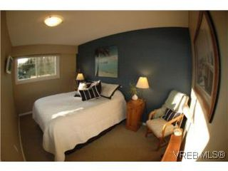 Photo 16: 7956 Arthur Dr in SAANICHTON: CS Turgoose House for sale (Central Saanich)  : MLS®# 535828