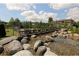 """Photo 27: 313 701 KLAHANIE Drive in Port Moody: Port Moody Centre Condo for sale in """"THE LODGE AT NAHANNI"""" : MLS®# R2459324"""