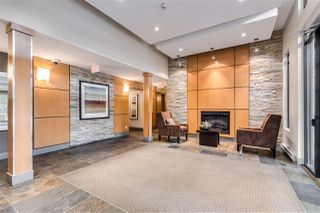 """Photo 23: 313 701 KLAHANIE Drive in Port Moody: Port Moody Centre Condo for sale in """"THE LODGE AT NAHANNI"""" : MLS®# R2459324"""