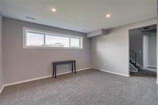 Photo 15: 6811 29 Avenue NE in Calgary: Pineridge Detached for sale : MLS®# C4303383