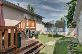 Photo 24: 6811 29 Avenue NE in Calgary: Pineridge Detached for sale : MLS®# C4303383