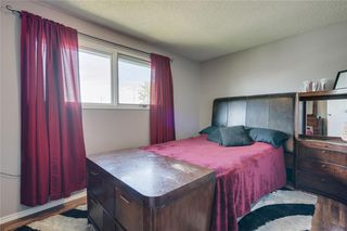 Photo 11: 6811 29 Avenue NE in Calgary: Pineridge Detached for sale : MLS®# C4303383
