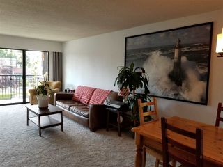 "Photo 4: 223 8860 NO. 1 Road in Richmond: Boyd Park Condo for sale in ""APPLE GREENE"" : MLS®# R2479693"