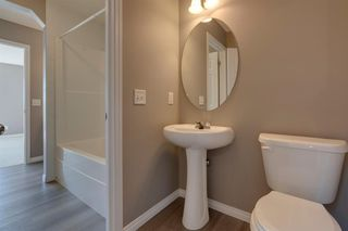 Photo 18: 350 PRESTWICK Circle SE in Calgary: McKenzie Towne Detached for sale : MLS®# A1029384
