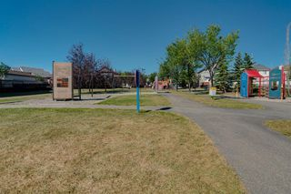 Photo 37: 350 PRESTWICK Circle SE in Calgary: McKenzie Towne Detached for sale : MLS®# A1029384
