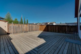 Photo 33: 350 PRESTWICK Circle SE in Calgary: McKenzie Towne Detached for sale : MLS®# A1029384