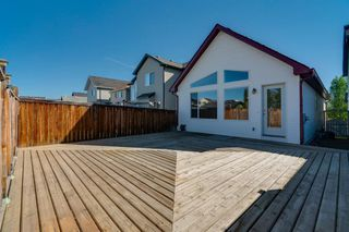 Photo 32: 350 PRESTWICK Circle SE in Calgary: McKenzie Towne Detached for sale : MLS®# A1029384
