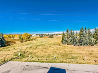 Photo 6: 412A 4455 Greenview Drive NE in Calgary: Greenview Apartment for sale : MLS®# A1056850