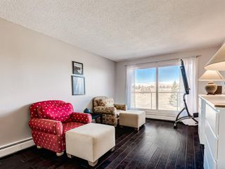 Photo 2: 412A 4455 Greenview Drive NE in Calgary: Greenview Apartment for sale : MLS®# A1056850