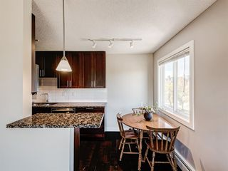 Photo 8: 412A 4455 Greenview Drive NE in Calgary: Greenview Apartment for sale : MLS®# A1056850