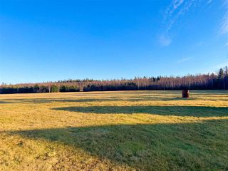 Photo 15: 744 FRENCH CROSS Road in Morden: 404-Kings County Residential for sale (Annapolis Valley)  : MLS®# 201927375