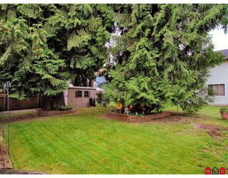 Photo 8: 9493 209A Street in Langley: Walnut Grove House for sale : MLS®# F2819904