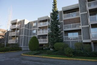 "Main Photo: 306 13525 96 Avenue in Surrey: Queen Mary Park Surrey Condo for sale in ""Parkswood"" : MLS®# R2446408"