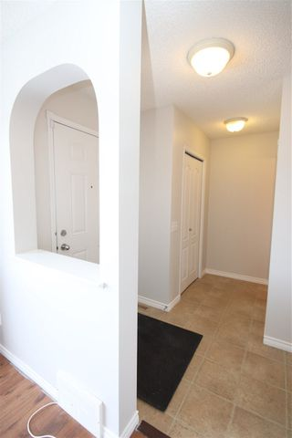 Photo 21: 135 BRINTNELL Boulevard in Edmonton: Zone 03 House for sale : MLS®# E4194337