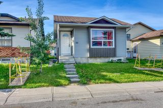 Photo 25: 35 Whitmire Road NE in Calgary: Whitehorn Detached for sale : MLS®# A1010209