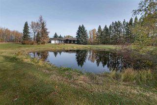 Photo 11: 410 73 Avenue in Edmonton: Zone 53 House for sale : MLS®# E4220389