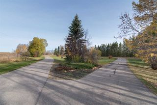 Photo 10: 410 73 Avenue in Edmonton: Zone 53 House for sale : MLS®# E4220389