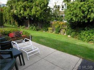 Photo 8: 12 3633 Cedar Hill Road in VICTORIA: SE Cedar Hill Townhouse for sale (Saanich East)  : MLS®# 268611