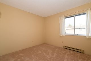 """Photo 12: 43 7740 ABERCROMBIE Drive in Richmond: Brighouse South Townhouse for sale in """"THE MEADOWS"""" : MLS®# R2436795"""