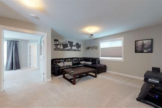 Photo 11: 20509 98A Avenue in Edmonton: Zone 58 House for sale : MLS®# E4198424