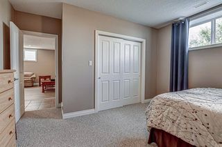 Photo 31: 34 Speargrass Boulevard: Carseland Detached for sale : MLS®# A1018526