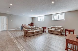 Photo 29: 34 Speargrass Boulevard: Carseland Detached for sale : MLS®# A1018526