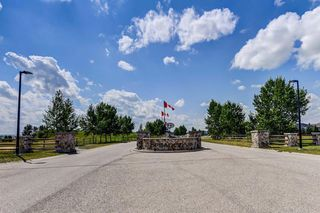 Photo 49: 34 Speargrass Boulevard: Carseland Detached for sale : MLS®# A1018526