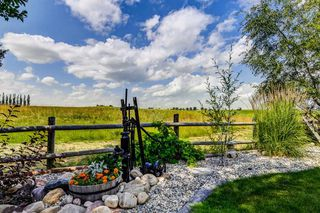 Photo 47: 34 Speargrass Boulevard: Carseland Detached for sale : MLS®# A1018526
