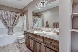 Photo 32: 34 Speargrass Boulevard: Carseland Detached for sale : MLS®# A1018526