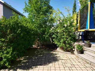 Photo 24: 3093 SPENCE Wynd in Edmonton: Zone 53 House for sale : MLS®# E4218194