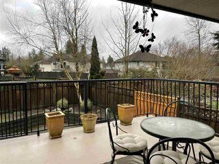 Photo 27: 23722 116 Avenue in Maple Ridge: Cottonwood MR House for sale : MLS®# R2525306
